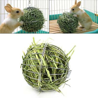 Stainless Steel Round Sphere Grass Collecting Ball For Feeding Rabbit Guinea Pig