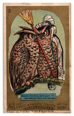 Been to the Club? Owls Great Atlantic & Pacific Tea Co 1883 Victorian Trade Card