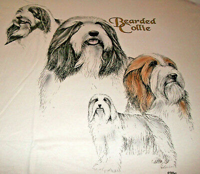 "Bearded Collie T-shirt "" Natural "" 3XL ( 54 ~ 56 )"