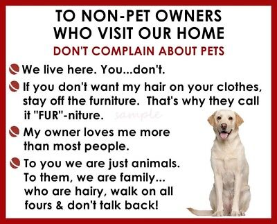 LABRADOR RETRIEVER YELLOW LAB House Rules for Non Pet Owners Fridge Magnet