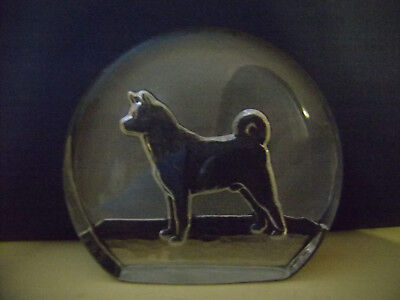 Beautiful Hand Made Glass Etched Akita Paperweight, Gift