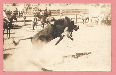 Dr Who Vintage Azo Rppc Steer Wrestler Real Photo Postcard 3 11292