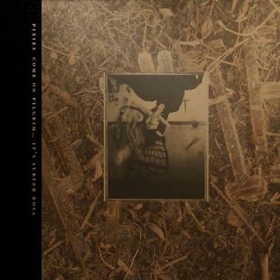 Pixies: Come On Pilgrim It's Surfer Rosa (Cd)