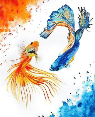 206515 Modern Abstract Beautiful Fish Decor Wall PRINT US