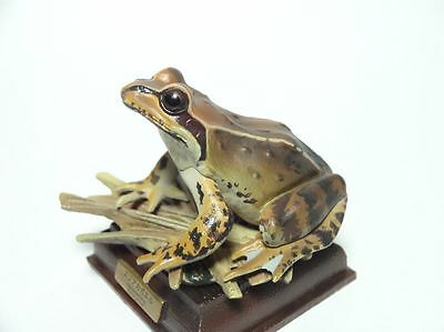KITAN CLUB Japan Hokkaidō Ezo brown frog PVC Mini Figure Figurine