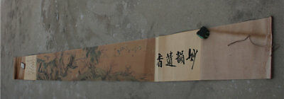 "140"" Old China Art Collect Ink Silk Flower Bird Drawing Painting Book ""妙韵遗香"""