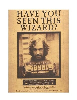Harry Potter Have You Seen Wizard Movie Poster Paper Wall Sticker Placard Decor