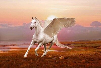 Holiday Gifts Home Decor winged horse pegasus Oil painting Printed On Canvas