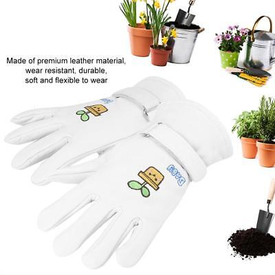 1 Pair Soft Leather Work Gloves Outdoor Gardening Digging and Planting Family