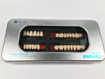 2-Box SHOFU ENDURA Dental Denture False Teeth Resin A2 Shade Size M30  28pcs/Box