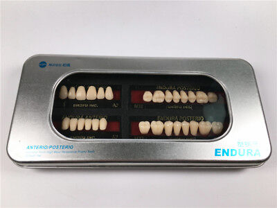 2 Sets Dental SHOFU ENDURA Denture False Teeth Resin A2 Shade Size M32 28pcs/Box