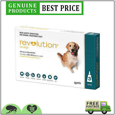 REVOLUTION Flea Heartworm Prevention 3 Doses for Dogs 20.1 to 40 Kg TEAL Pack