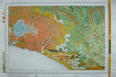 Large Geological map of Bridport
