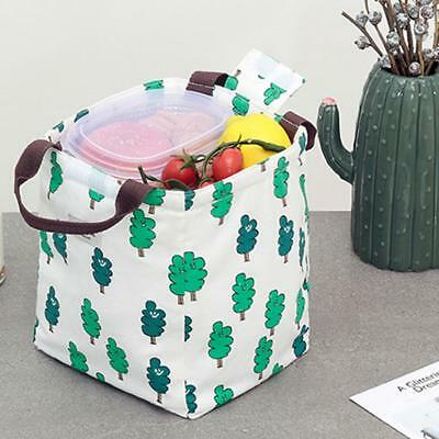 Thermal Insulated Cooler Waterproof Picnic Lunch Bag Box Storage Portable Cute