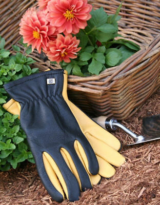Gold Leaf  Dry Touch Gardening Gloves - Gents Size