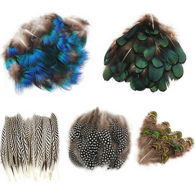 Wholesale Beautiful Assorted Natural Pheasant Feathers Wedding Crafts Trimmings