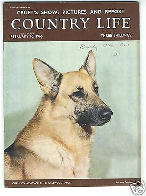 1966 COUNTRY LIFE Magazine JACQUELINE TRENCH EADIE Fens Flood CRUFTS (7953)