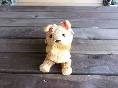 Whiskers The Dog Schnauzer Terrier Beanie Baby Vintage Ty Bean Bag Plush Beanies