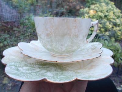 Pretty Wileman Foley Pre Shelley Trio Cup Saucer Plate In Lovely Condition