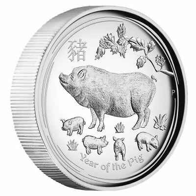 2019 Year of the Pig 1oz Silver Proof High Relief Coin