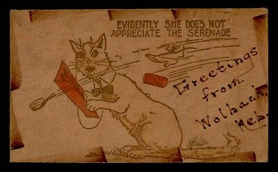 Dr Who 1908 Wolbach Ne Greeting Cat Serenade Leather Postcard C57455