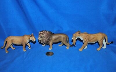 Lot of 3 Lions 2 are Schleich 1 is Unknown--Very Good Used Condition