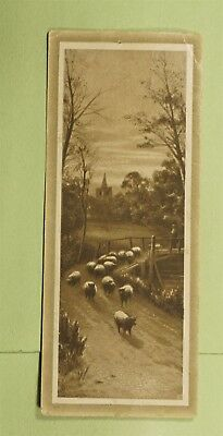 DR WHO VICTORIAN TRADE CARD ADVERTISING BISSELLS CARPET SWEEPER  d64914
