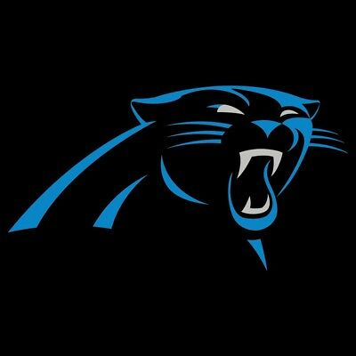 *RE-LISTED* 2 Carolina Panthers vs NO Saints Tickets—LOWER level section 253