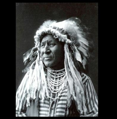 White Swan PHOTO Custer's Crow Scout Battle of Little Bighorn Survived!
