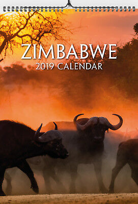 2019 A4 Zimbabwe Wall Calendar – Big 5 South Africa Wild Animals