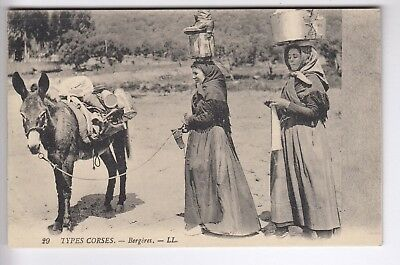 Cpa  Ile Corse 20 -  Types Corses Bergeres Transport Ane Donkey 1910 ~D05