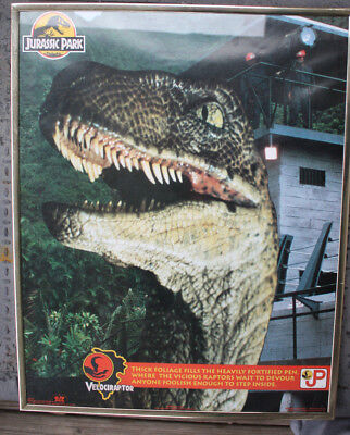 vintage movie poster original Jurassic park Velociraptor framed under glass