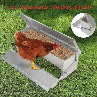 Chicken Feeder 8.2L Food Automatic Chook Treadle Self Opening Poultry Rat Chook