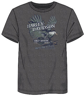 Harley-Davidson Fanatics Fearless Debris T-Shirt Gr. XL - Heather Grey