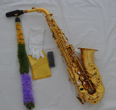 Professional gold Eb Alto Saxophone High F# Sax with mouthpiece case