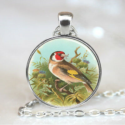 Gold Finch Sitting on Tree Branch Photo Glass Dome Pendant W/Silver Link Chain