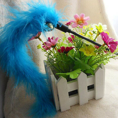 Cat Kitten Pet Teaser Turkey Feather Interactive Stick Toy Wire Chaser Wand LC