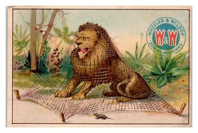 The Lion and the Mouse, Wheeler & Wilson Sewing Machines Victorian Trade Card