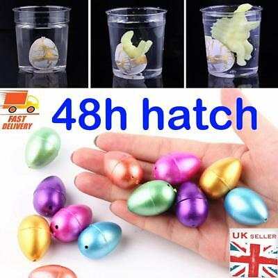Hatching Growing Chicken Egg Magic Toy Kids Children Fun Play Party Bag TY106