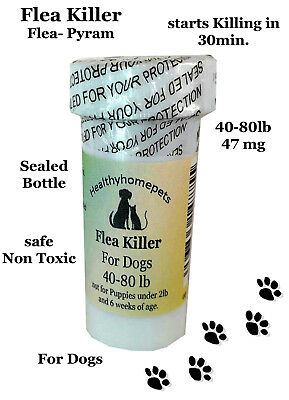 100 Capsules Flea Killer for Dogs 40-80 Lbs.47 Mg Control Vet recommended dosage