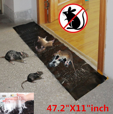 3/5/10X UK 1.2M Big Size Mice Mouse Traps Board Super Sticky Rat Snake Bugs Safe