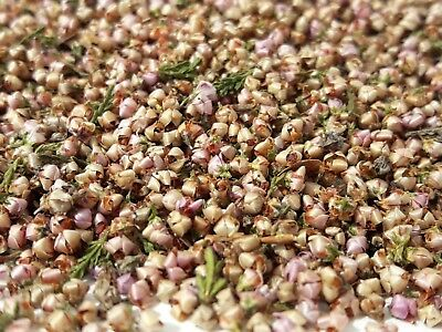 Dried Pink Heather Flowers, Herbal Tea, Crafts Soap Bath Bomb Infusion Tincture