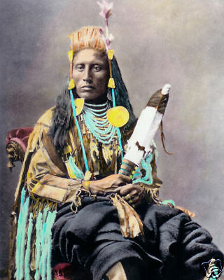 """MEDICINE CROW NATIVE AMERICAN INDIAN 1880 8x10"""" HAND COLOR TINTED PHOTOGRAPH"""