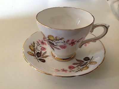 Royal Kendall Tea Cup Saucer Fine Bone China England Pink Yellow Pussywillow