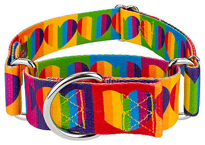 Country Brook Petz® 1 1/2 Inch Rainbow Hearts Martingale Dog Collar