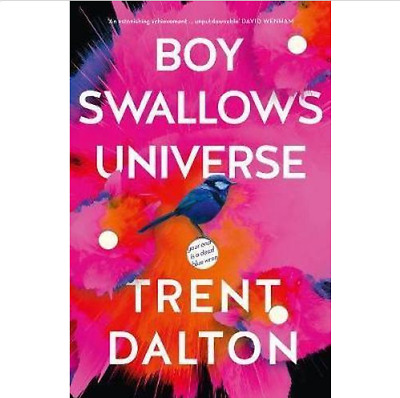 Boy Swallows Universe By Trent Dalton Paperback