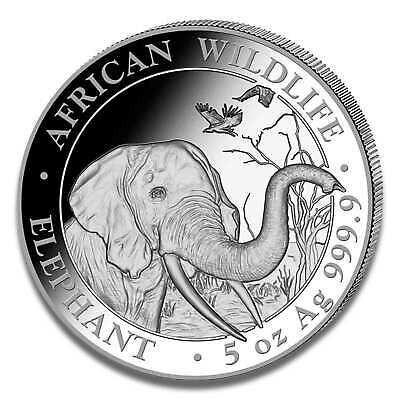 5 Ounces Somalia Elephant 2018 Silver Coin - African Wildlife - Mint State