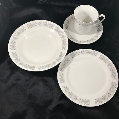 Dynasty Fine China Elegance Pattern Place Setting - Cup Saucer Bowl and Plate