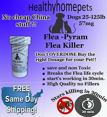 100 CAPSULES RAPID Flea Killer Control Capsules Dogs 25-125 Lbs.57Mg FAST KILLER