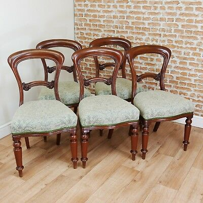 Set of 5 Antique Early Victorian Balloon Back Solid Mahogany Dining Chairs C1850